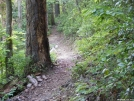 Just the Trail
