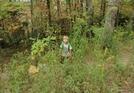 Joshua On Trail