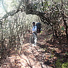 Section Hike