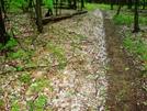 Hail on Trail by FlyPaper in Trail & Blazes in Virginia & West Virginia