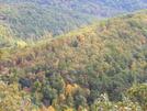 View In Snp by FlyPaper in Views in Virginia & West Virginia