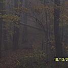 Fall 2011 Hike by Cloudseeker in Birds