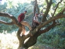 Fall break in Georgia by Cloudseeker in Section Hikers