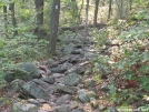 Trail by aufgahoban in Trail & Blazes in New Jersey & New York