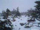 A_very_cold_day by rumbler in Trail & Blazes in Maine