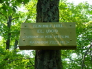 Connecticut  Trail Signs by Undershaft in Sign Gallery