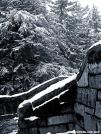 Snowy Wall & Hemlocks by Ratbert in Views in North Carolina & Tennessee
