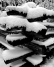 Snowy fence - Newfound Gap GSMNP by Ratbert in Views in North Carolina & Tennessee