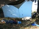 Phoebe and hammock