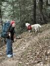 hikin with phoebe by SteveJ in Trail & Blazes in Georgia