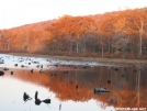 Fall in High Point S.P., NJ by vipahman in Views in New Jersey & New York