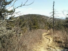 Clingmans approach by Jaybird in Trail & Blazes in North Carolina & Tennessee