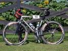 Jaybird's Bicycle