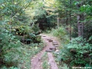 Steps along the AT by Uncle Wayne in Views in North Carolina & Tennessee
