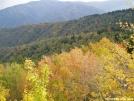 Mt. Cammerer View