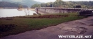 Wild Hog Damage by Uncle Wayne in Views in North Carolina & Tennessee