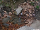 4.6.06 spring at spence field by CaptChaos in North Carolina & Tennessee Shelters