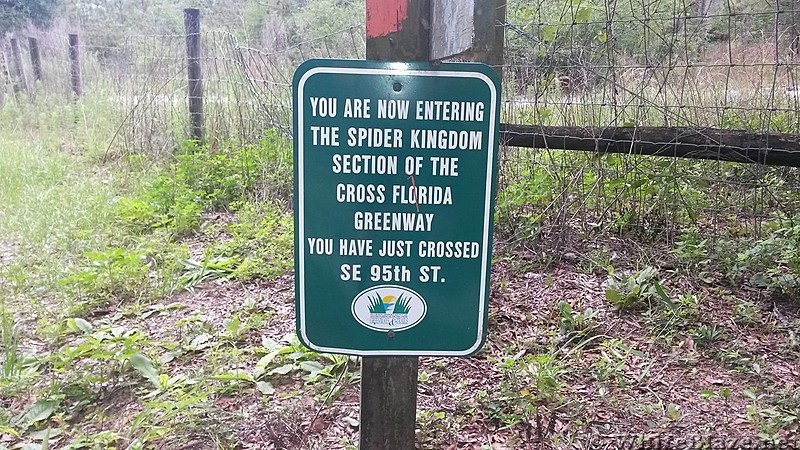 Spider Kingdom sign