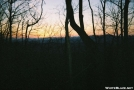 Solo trip-Benton MacKaye trail