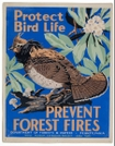 WPA Ruffed Grouse Poster