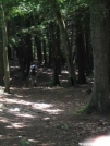 AT descending Mount Race by Askus3 in Trail and Blazes in Massachusetts