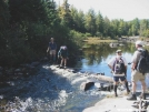 AT crossing Bald Mountain Stream