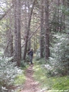 AT in the vicinity of Hangtown Road by Askus3 in Trail & Blazes in Maine