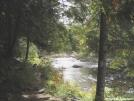 Pierce Pond Stream