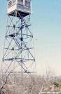Mt. Everett fire tower