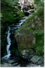 Logan Brook by Askus3 in Special Points of Interest