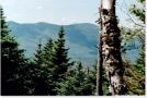 Third, Fourth & Barren Mountains