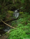 Stream just north of Davenport Gap by Digger54 in Views in North Carolina & Tennessee