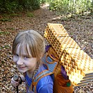 Smokies Loop Oct 2014 by greentick in Section Hikers
