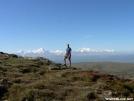 Mt Hayes views