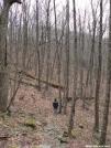 sherpa dan on trail by greentick in Trail & Blazes in Georgia