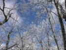 26-27 Feb 2008 by greentick in Views in Georgia