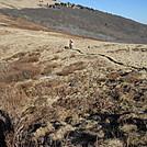 Whitetop Mtn by hiker37691 in Views in Virginia & West Virginia