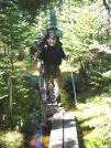 Ubiquitous Maine bog-bridge