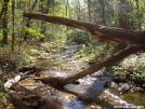 Justus Creek by ghoul00 in Trail & Blazes in Georgia