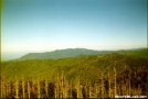 Clingmans Dome by ghoul00 in Views in North Carolina & Tennessee