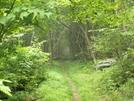 Shenandoah by vanwag in Trail & Blazes in Virginia & West Virginia