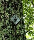 Trail Marker In Shenandoah by vanwag in Trail & Blazes in Virginia & West Virginia