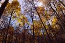 Sky Meadows, Va by vanwag in Views in Virginia & West Virginia