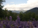 Mount Washington by bullseye in Views in New Hampshire