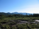 high altitude bog by ryan207 in Views in New Hampshire