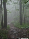 Foggy today by Smooth in Trail & Blazes in Virginia & West Virginia