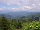 Pics From Trip To Smokies 2009