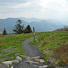 Near Round Bald by namelesslass in Trail & Blazes in North Carolina & Tennessee