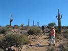 Arizona Trail Volunteer Vacation