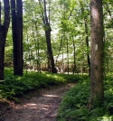 Easy Trail by Birdny in Trail & Blazes in Maryland & Pennsylvania